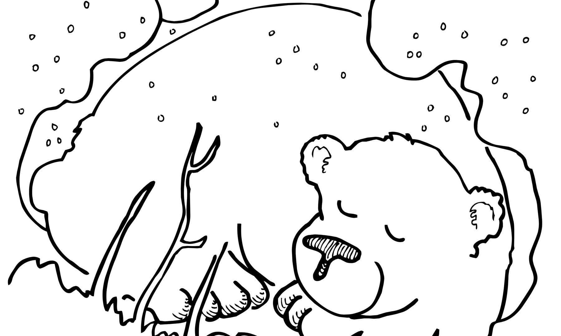 1800x1080 Little Brown Bear Coloring Pages Free Sheets How Best Big Images