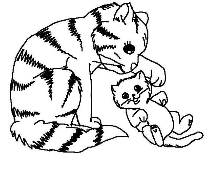 800x667 Mommy Cat Plays With Her Kid Coloring Page Animal Pages