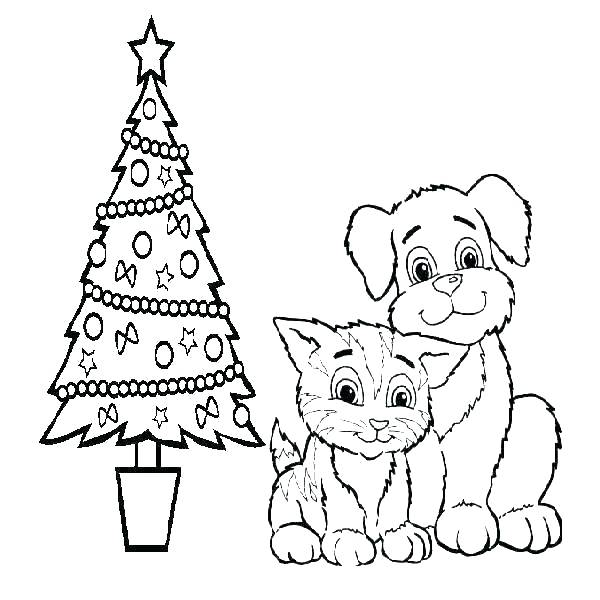 Big Cat Coloring Pages At Getdrawings Com Free For Personal Use