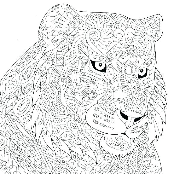 570x570 Cat Coloring Sheet Cat Coloring Pages Kitty Page Cat Coloring