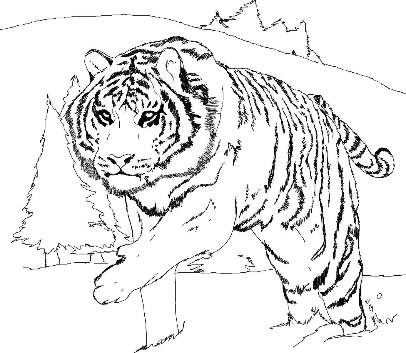 1381x1200 The Best Printable Tiger Coloring Pages For Kids Pic Realistic Big