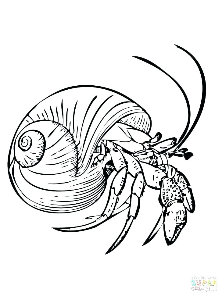 728x971 Eyes Coloring Pages Coloring Pages Stock Eye Coloring Pages Cute