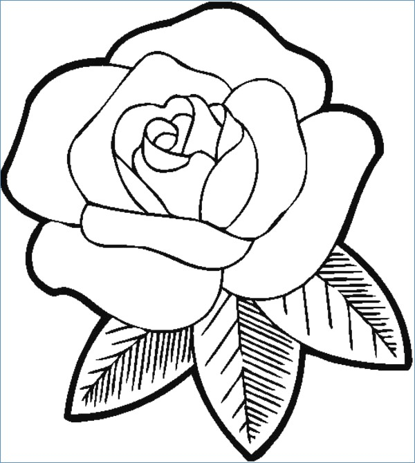 600x670 Butterfly And Big Flower Coloring Page For Kindegarten