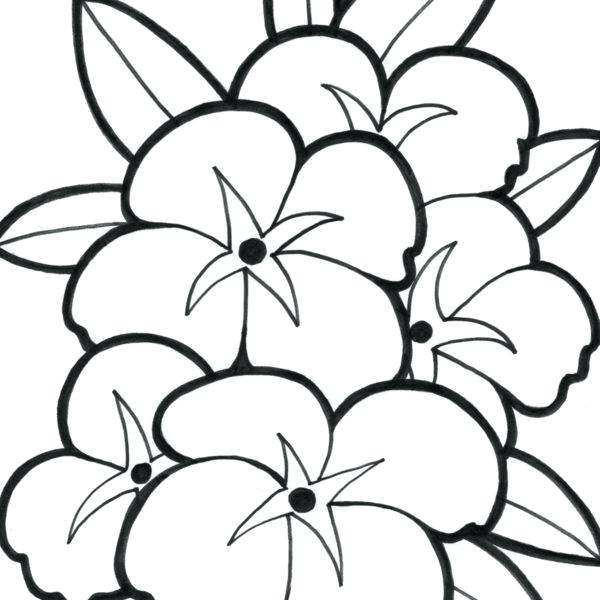 600x600 Cute Flower Coloring Pages Big Flower Coloring Pages Cute Flower