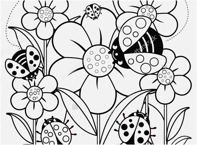 827x609 The Ideal Stock Coloring Pictures Of Flowers Most Popular