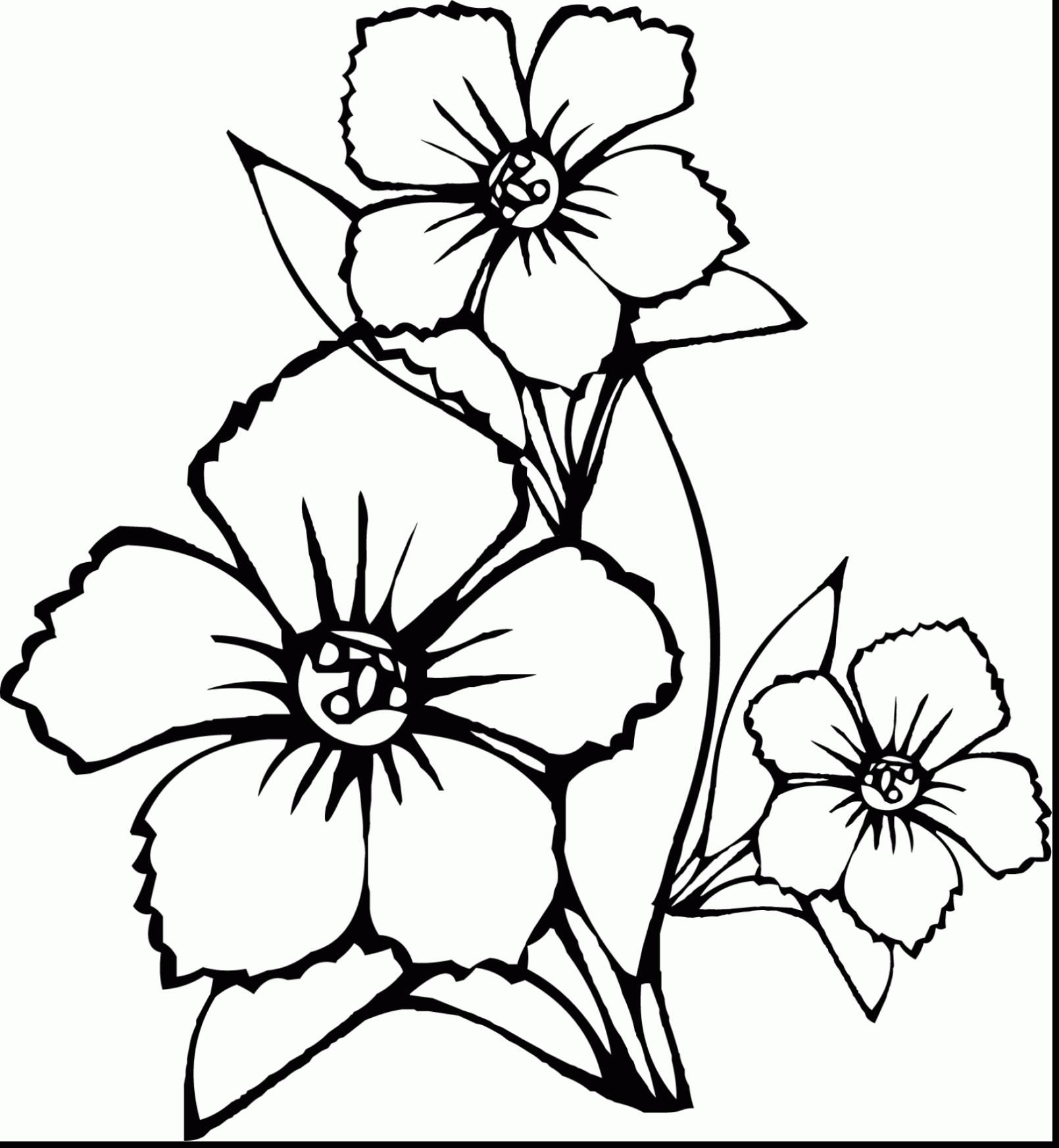 1610x1746 Big Flower Coloring Pages Coloring Page Fun