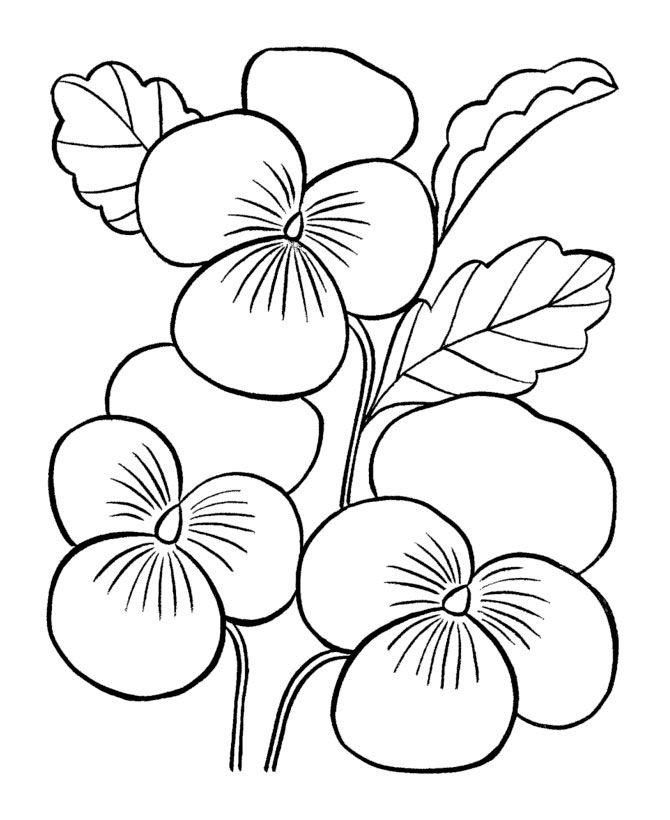 670x820 Big Flower Coloring Pages Flowers Coloring Pages Artsy Crafty
