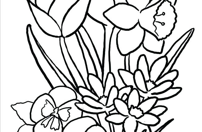 650x425 Big Flower Coloring Pages X Big Flower Coloring Sheets