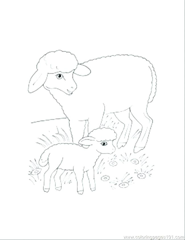 650x841 Coloring Pages Sheep Coloring Pages Sheep Mother And Lamb Coloring