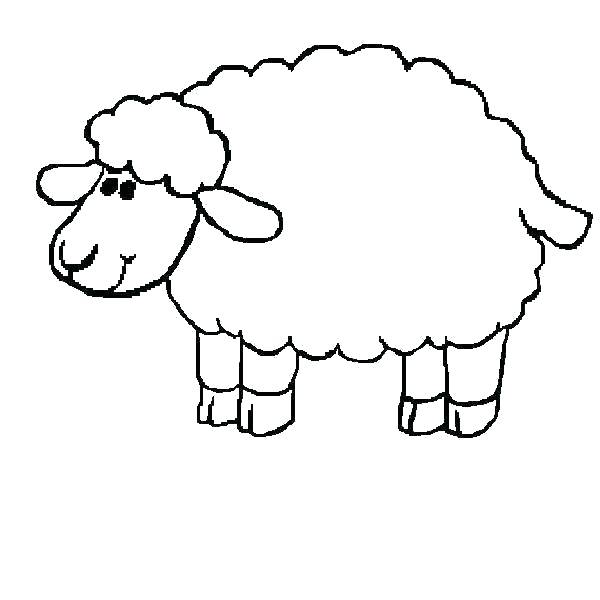 600x600 Sheep Color Page Coloring Pages Of Sheep Number Coloring Pages