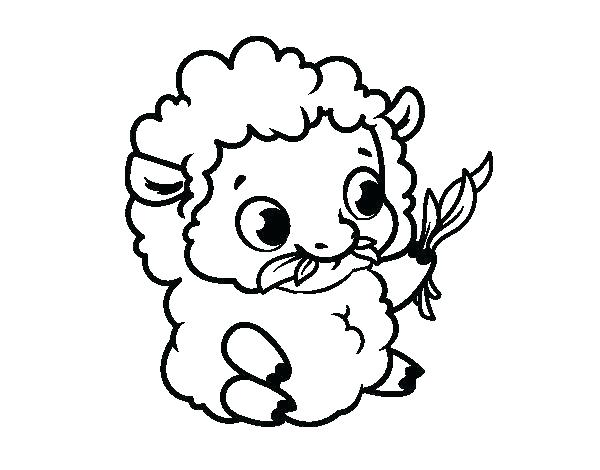 600x470 Sheep Coloring Page Coloring Pages Sheep Baby Sheep Coloring Pages