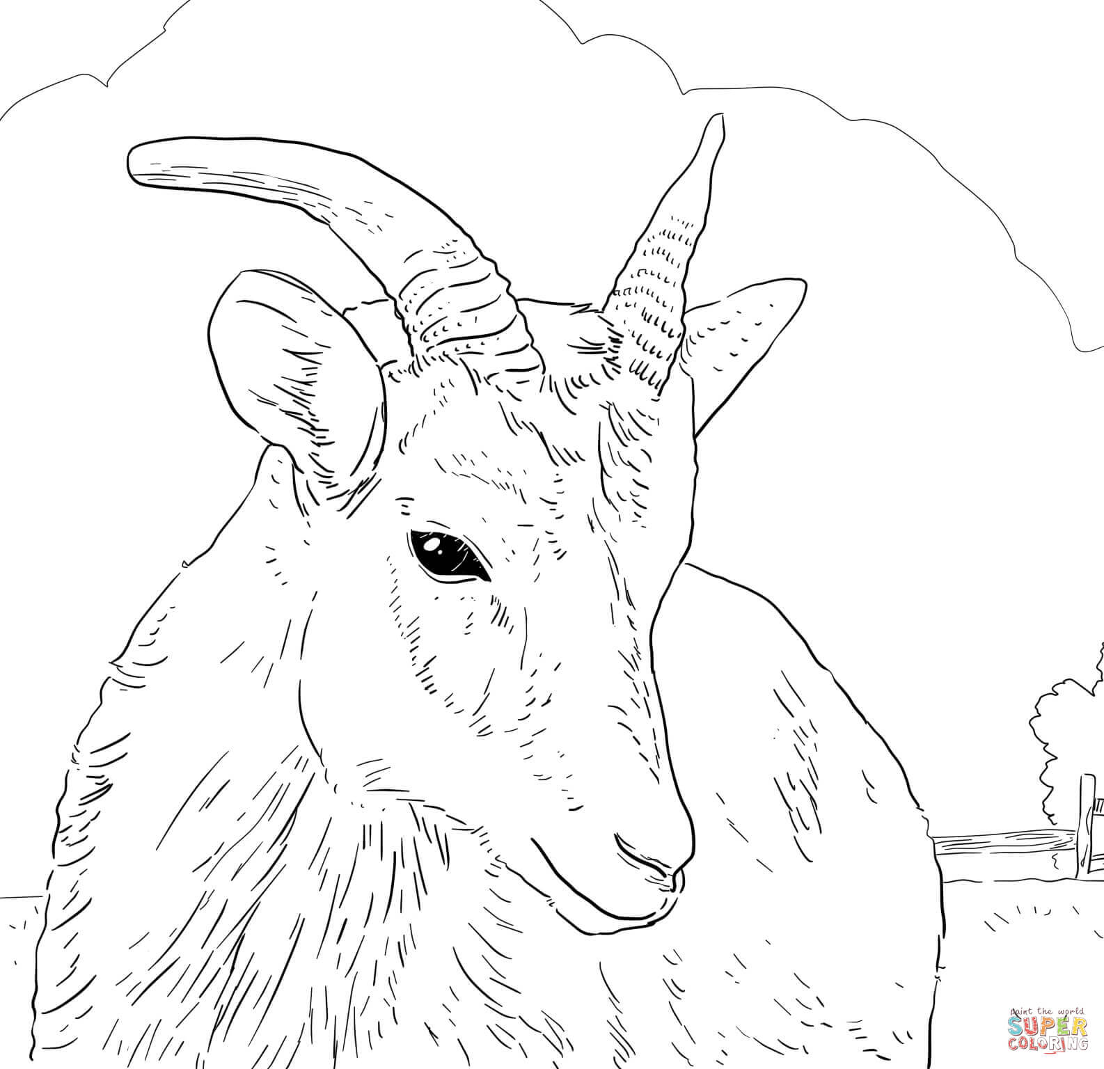 1586x1536 Sheep Coloring Pages Free Coloring Pages Sheep Coloring Page Image