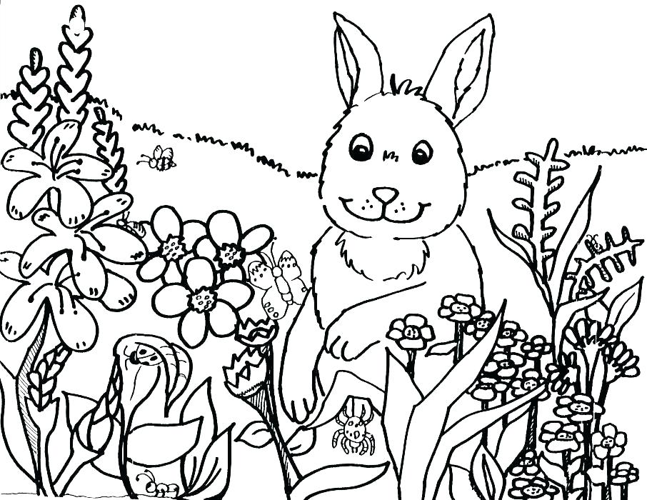 906x700 Biology Coloring Sheets Biology Ng Pages Rabbit The Flowers Sheet