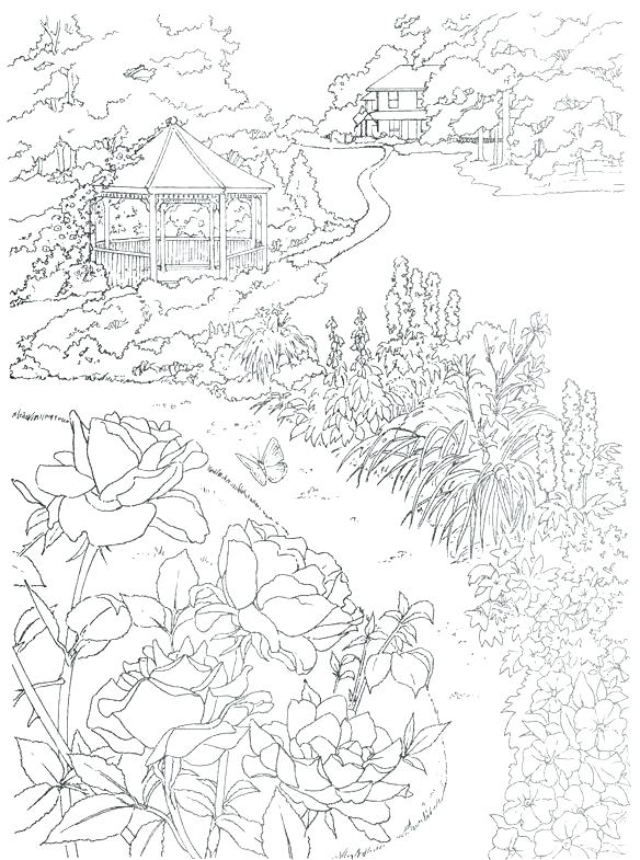 584x785 Biology Coloring Book