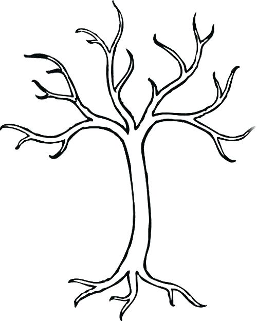 500x625 Bare Tree Branches Coloring Page Bare Tree Without Leaves Coloring