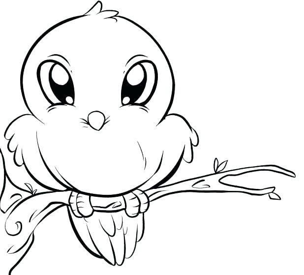 618x559 Bird Picture Also Cute Bird Cute Bird Coloring Page Free Coloring