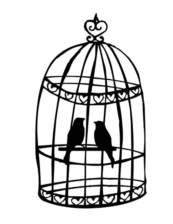 600x778 Breeding Bird In Bird Cage Coloring Pages Best Place To Color