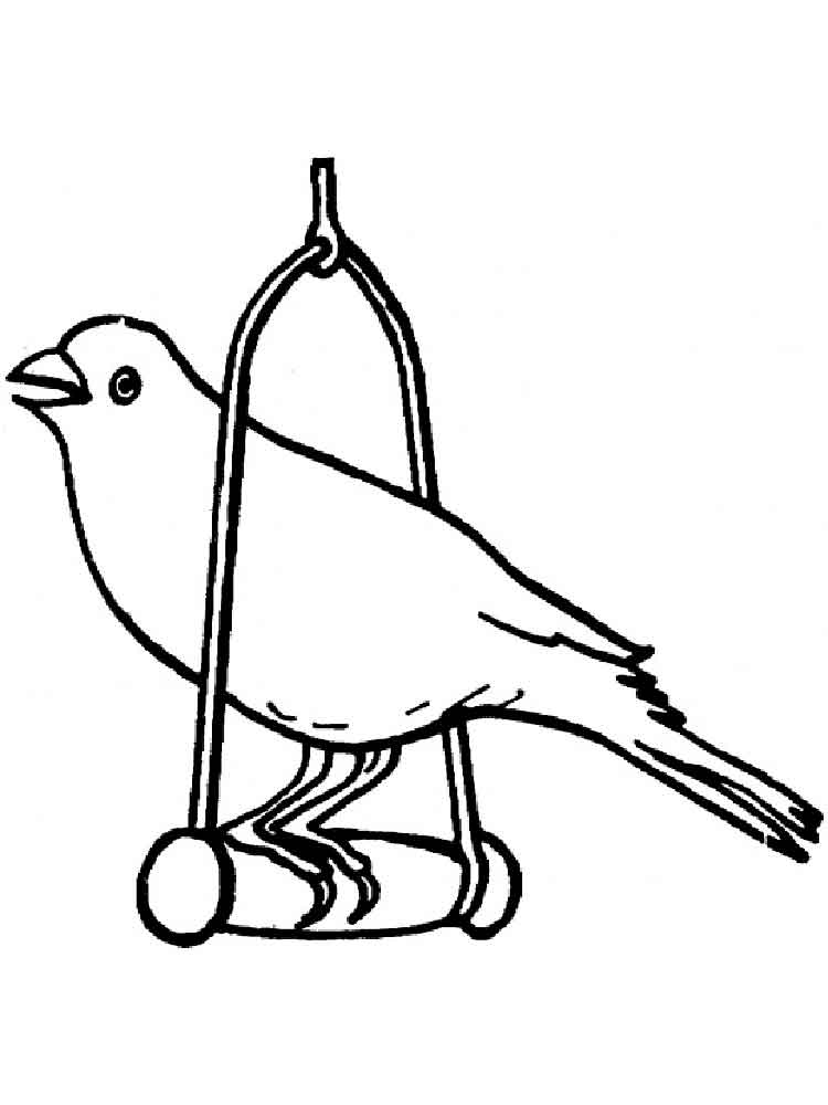 750x1000 Canary Coloring Pages Download And Print Canary Coloring Pages