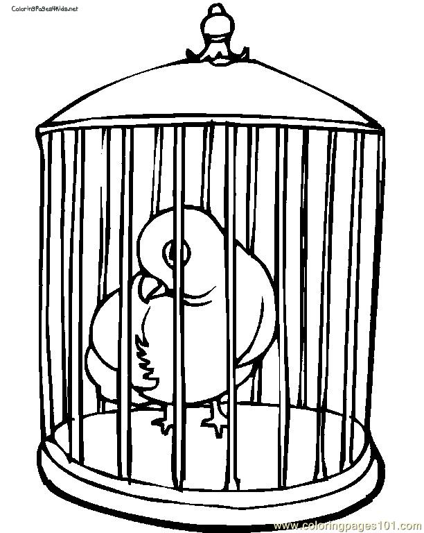 612x768 Parrot In Cage Coloring Page