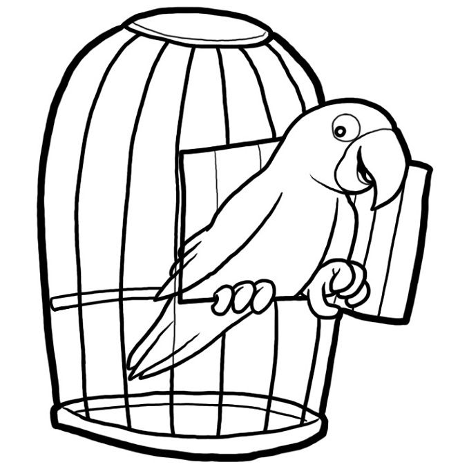 650x683 Free Bird Cage Coloring Page Coloring Pages Bird Cages