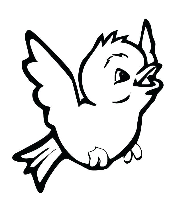 600x776 Coloring Pages Birds Flying