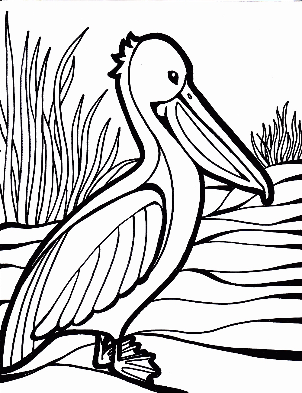 1000x1300 Coloring Pages Of Birds Luxury Birds Coloring Pages To Knowing