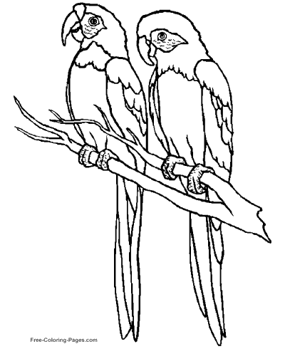 400x490 Coloring Pages Of Birds