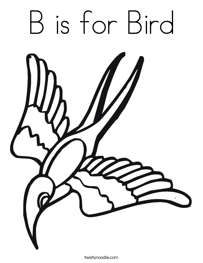 685x886 B Is For Bird Coloring Page