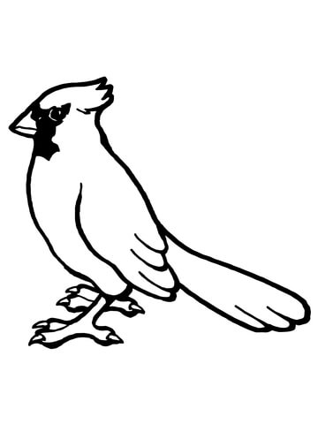 360x480 Printable Bird Coloring Pages