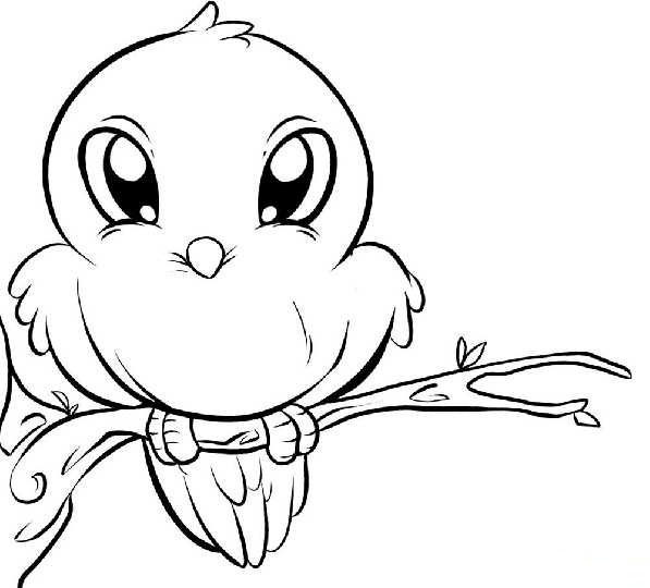 597x540 Baby Bird Coloring Pages