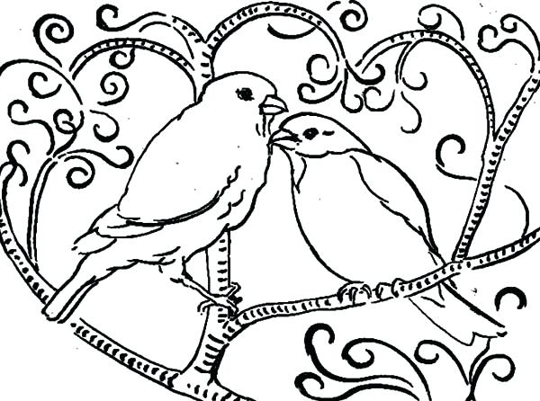 600x446 Bird Coloring Page