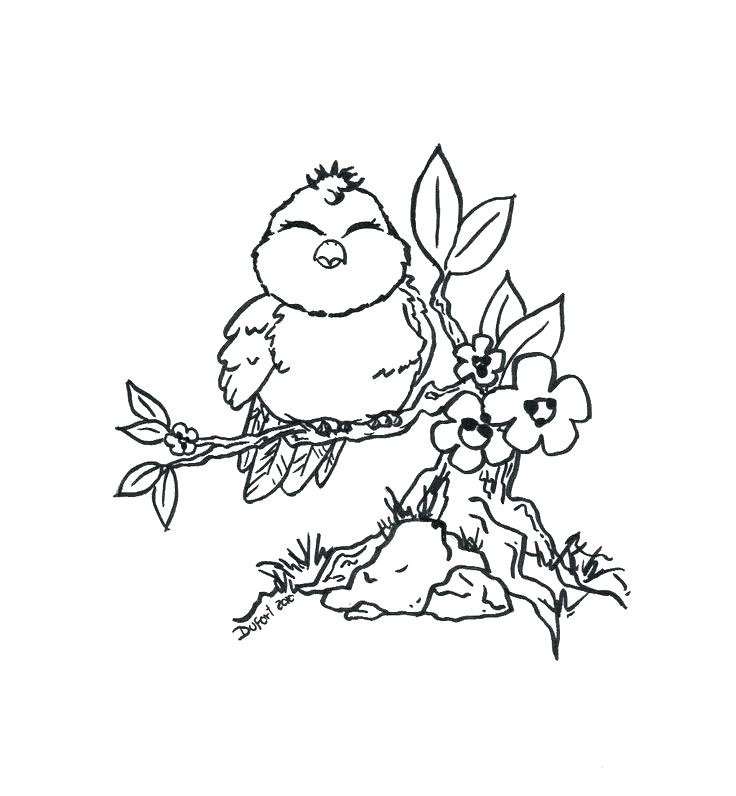 736x796 Bird Coloring Pages For Adults Coloring Page Of Birds As Love Bird