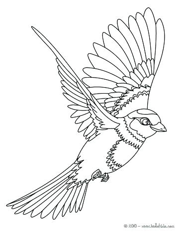 364x470 Bird Coloring Pages For Adults Phoenix Flying Page Animal