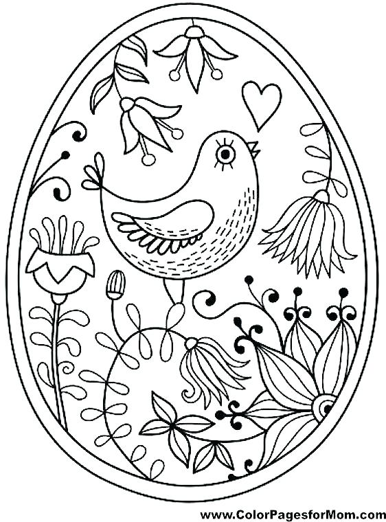 562x760 Birds Coloring Pages Bird Coloring Pages For Adults For Bird