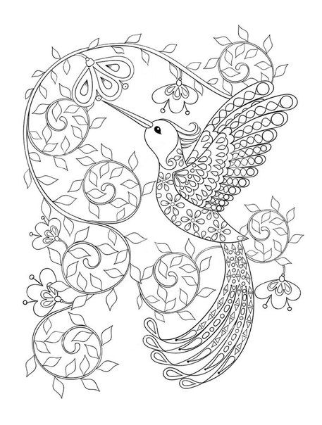 457x604 Free Bird Coloring Pages Fun Time