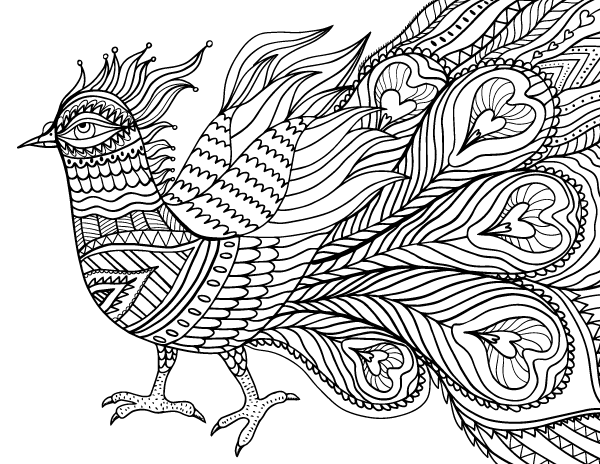 600x464 Abstract Bird Adult Coloring Page