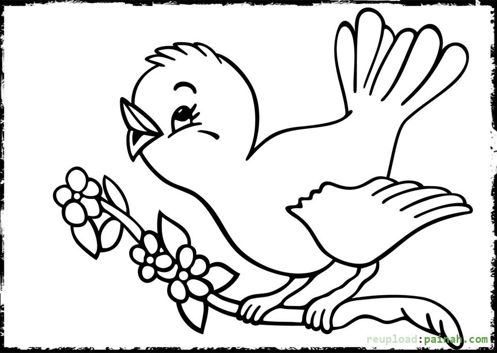 1024x728 Baby Bird Coloring Pages Printable Coloring Pages