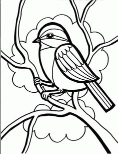 236x307 Parrot Coloring Pages Cinderella Bird, Adult