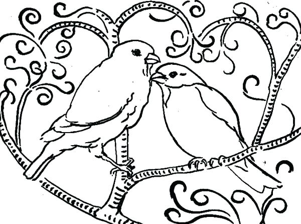 600x446 Bird Nest Coloring Page