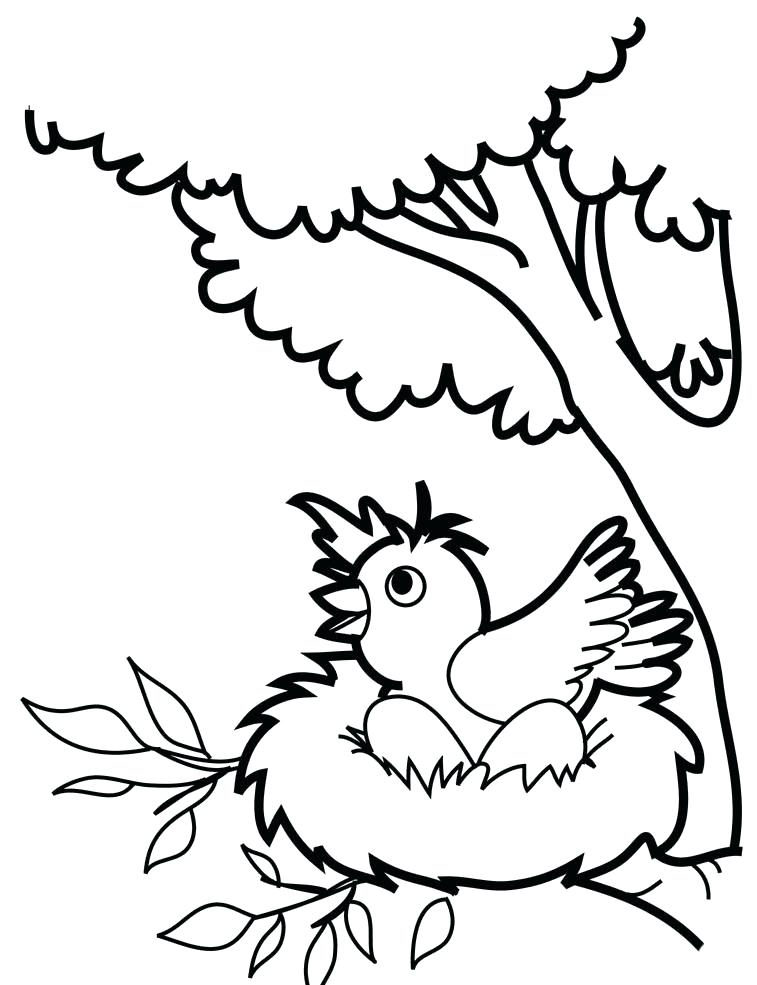 757x985 Bird Coloring Pages Birds Coloring Pages Bird Coloring Pages