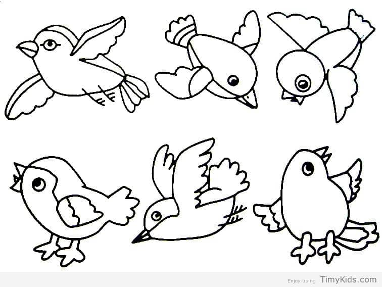 756x568 Bird Coloring Pages Preschoolers Birds Coloring Pages