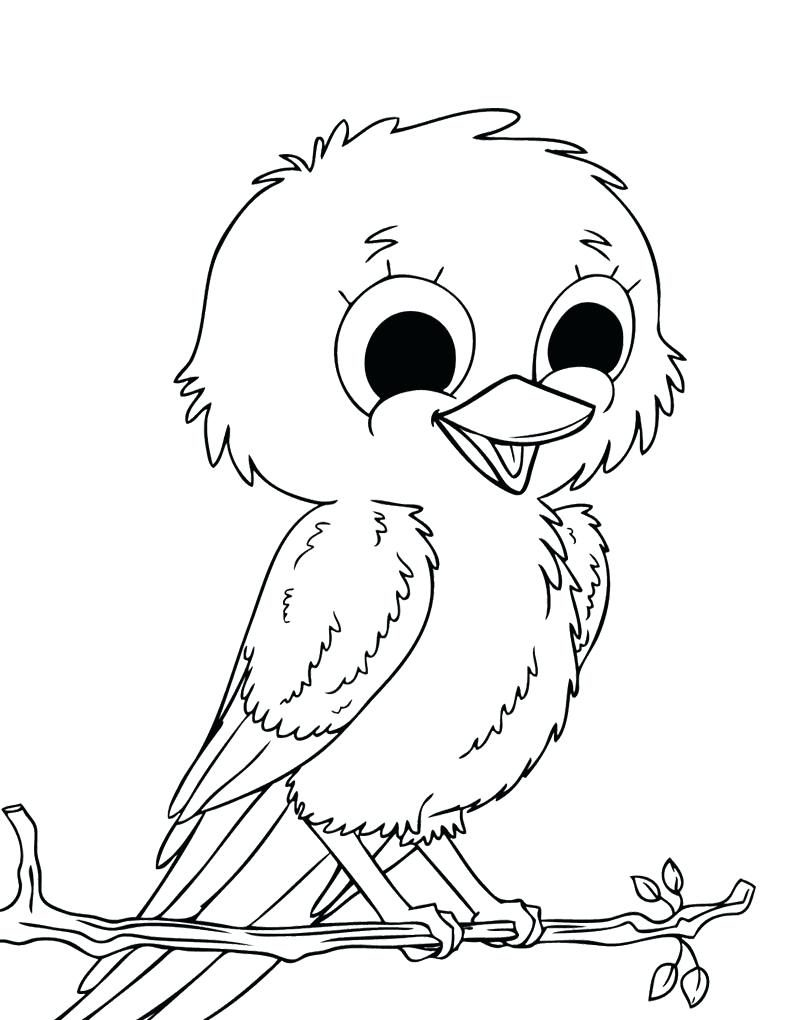 800x1020 Spring Birds Coloring Pages Adult Page For Kids Crane Bird