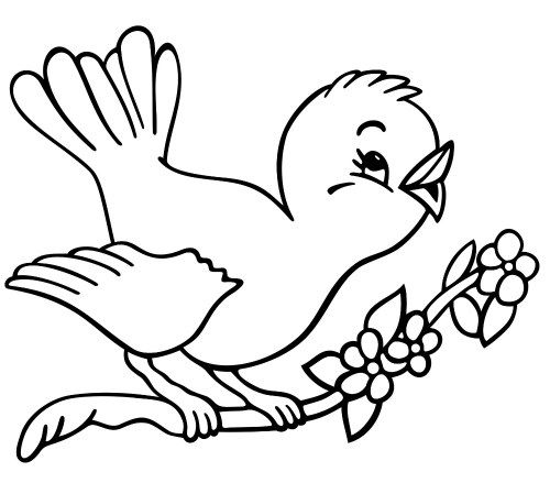 500x439 Spring Coloring Pages For Preschool Spring Bird Coloring Book
