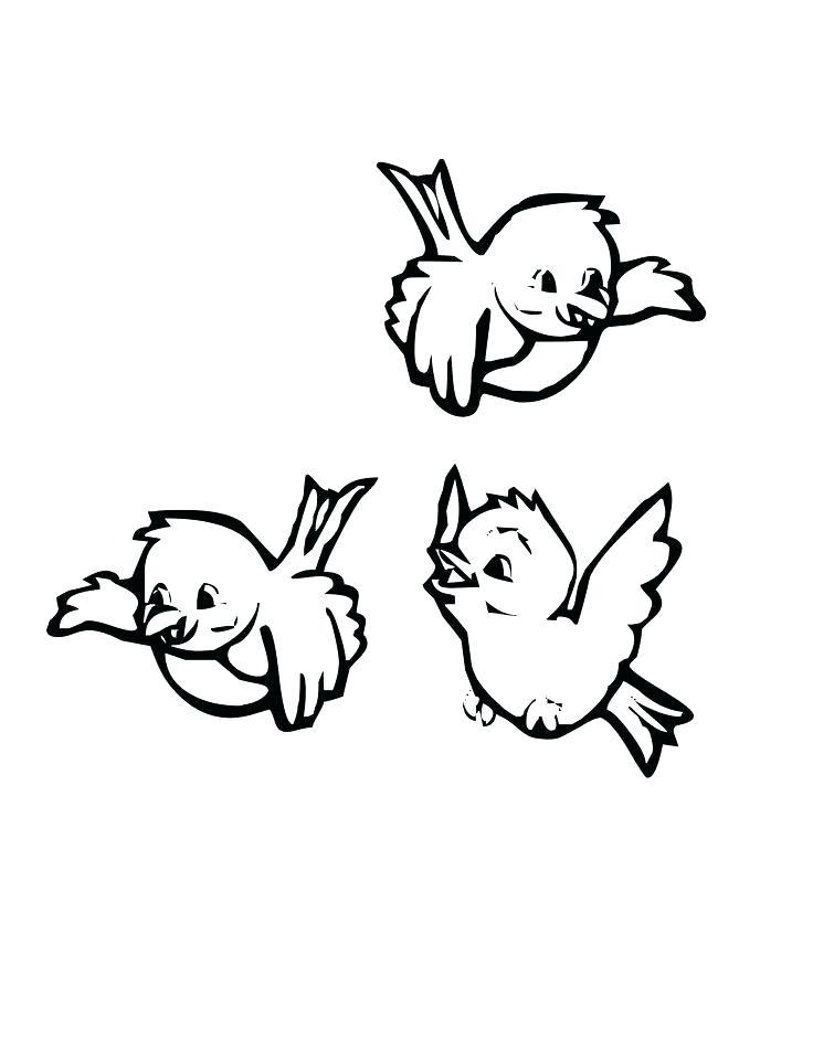 736x952 Bird Coloring Pages Bird Coloring Pages Preschool For Preschooler
