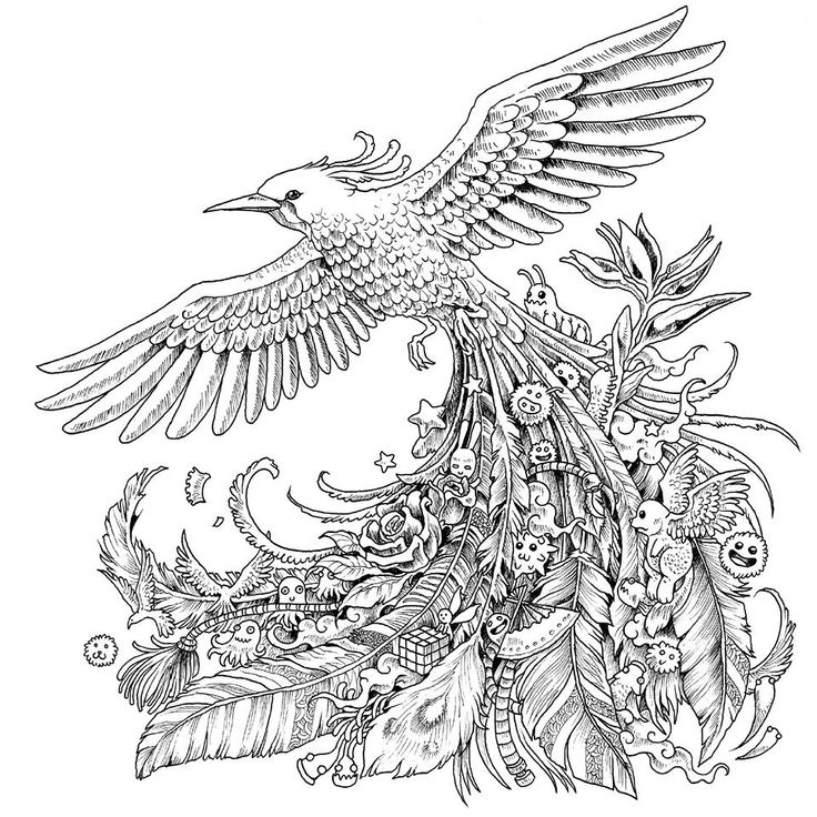 Bird Feather Coloring Pages