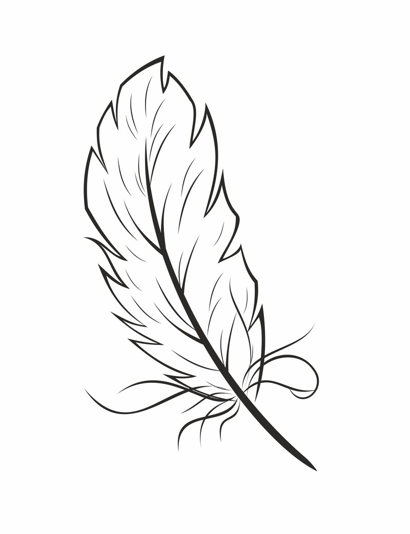 800x1042 Feather Coloring Page