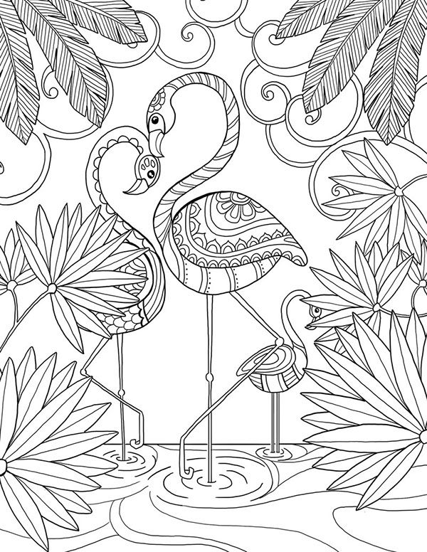 600x776 Flamingo Coloring Page