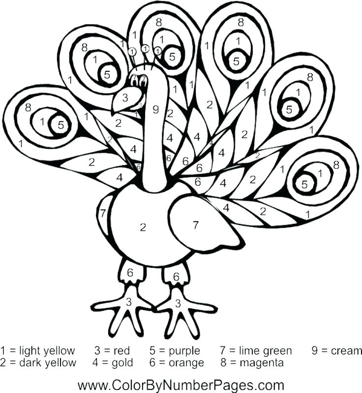 736x799 Peacock Feather Coloring Page Pin Drawn Feather Peacock Feather