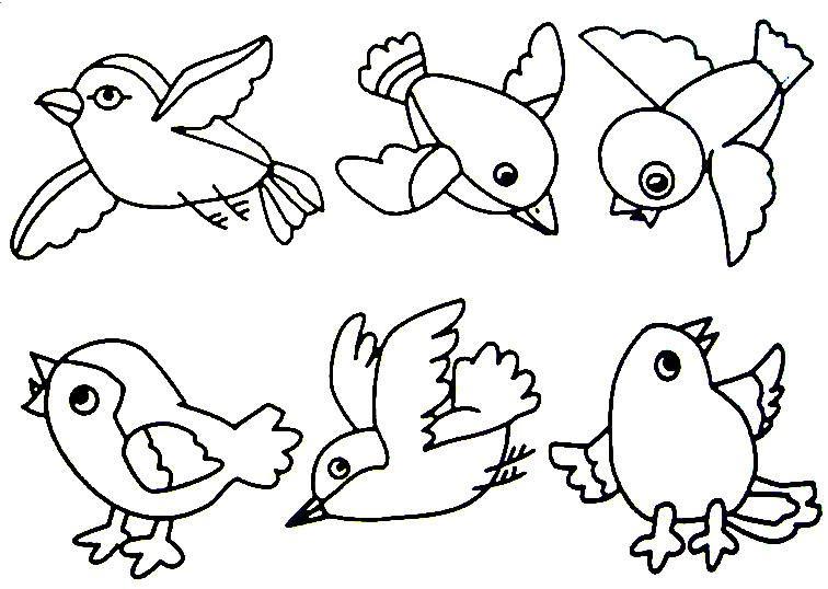 756x538 Bird Projects For Preschoolers Birds Preschool Activities, Birds