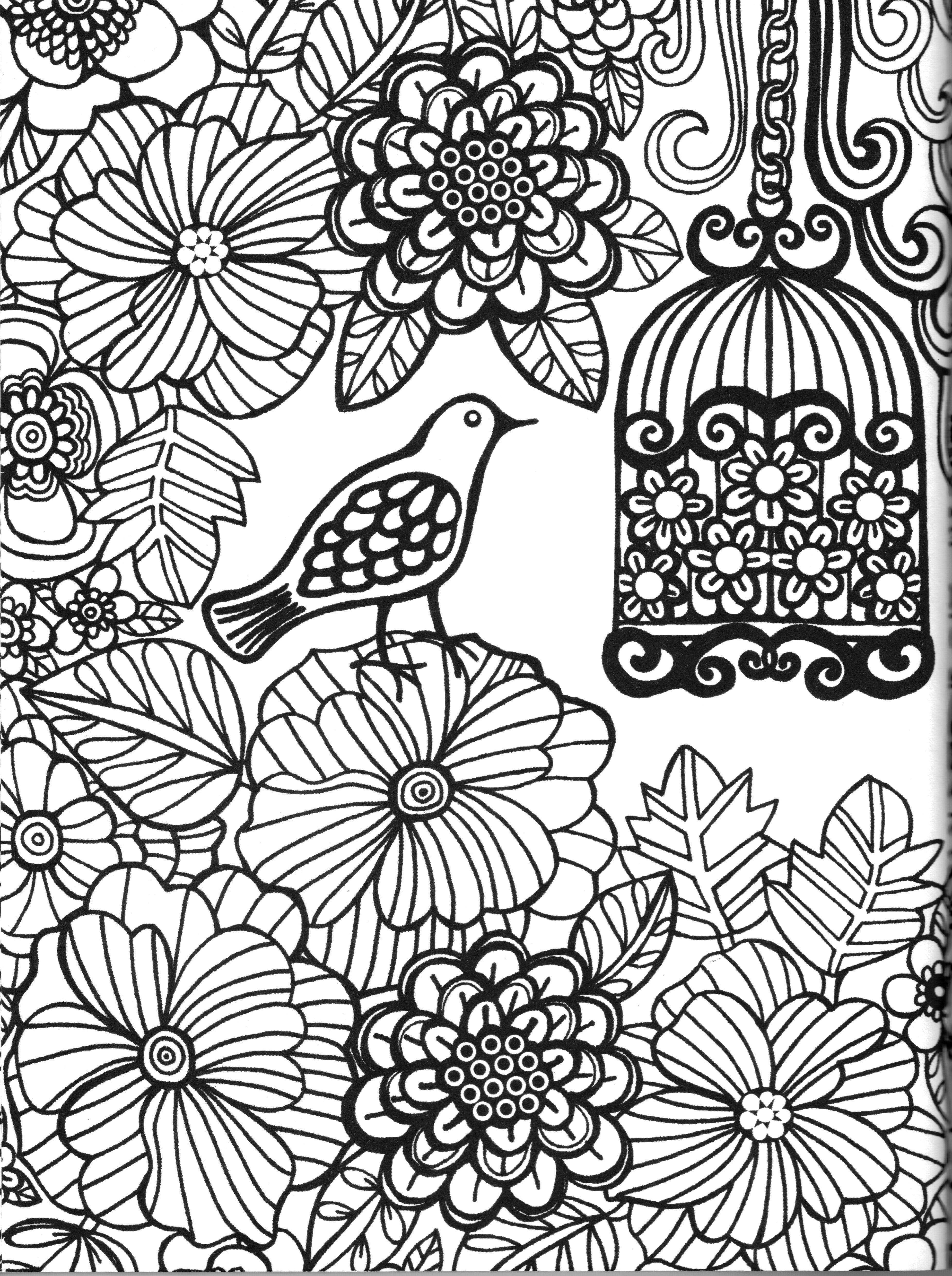 3699x4957 Coloring Garden Bird Colorir Coloriage Coloriar Coloring Pages